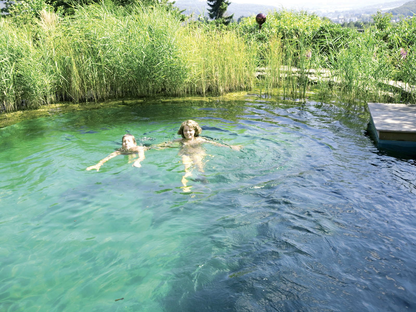 Home for Schwimmteich natur