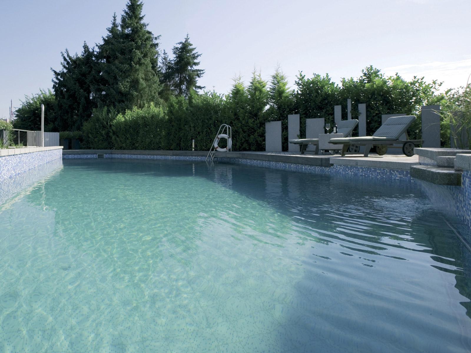 salz schwimmteich schwimmbad und saunen. Black Bedroom Furniture Sets. Home Design Ideas